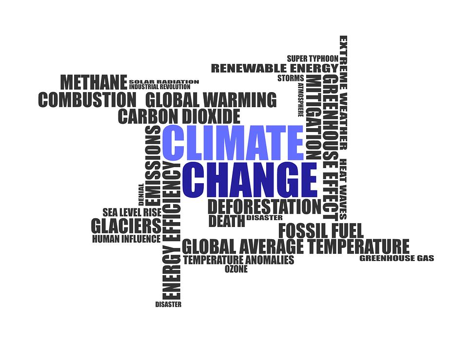 mengapa pemanasan global dapat menyebabkan kepunahan spesies jelaskan kunci jawaban